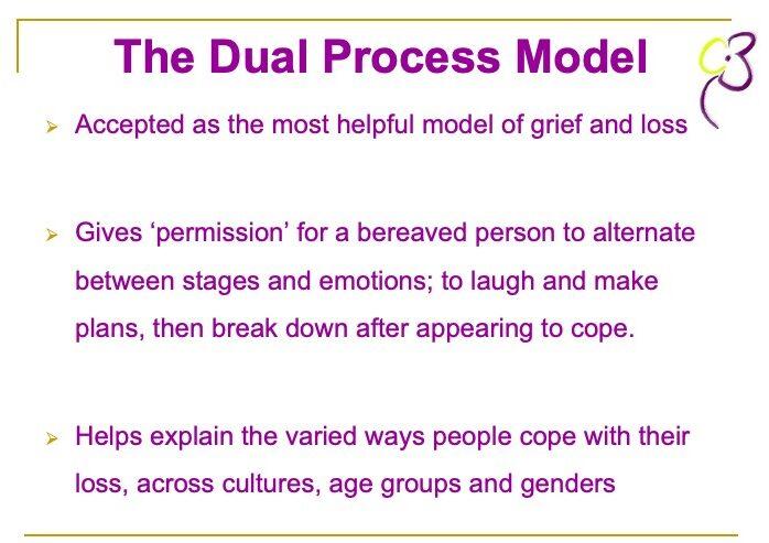 Cruse slide explaing the dual process model